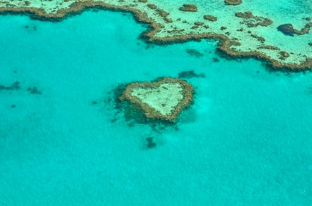 heart-australia